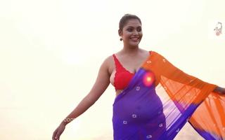 Megha Saree Make suitable