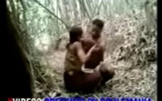 girlfriend boobs sucked hard and junglee sex