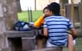 Indian College Students Fucking fro public park Voyeur Recorded unconnected with people