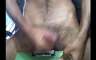 Desi Indian cock.