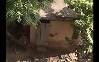 Neibour Aunty Irrigation